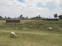 Mpalale CBO (outside), Dedza Displays a larger version of this image in a new browser window