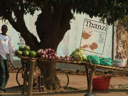 fruit stall Displays a larger version of this image in a new browser window